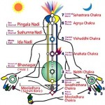 How Kundalini Yoga Is Related To Chakras?