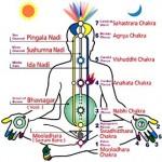 How Kundalini Yoga Is Related To Chakras?