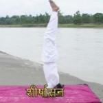 Sirsasana | Headstand Pose